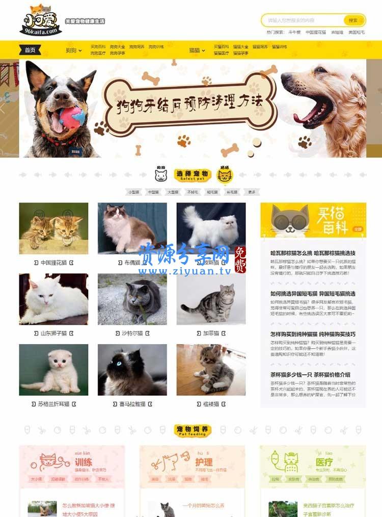 专业宠物资讯平台网站源码 92ganme《小可爱宠物网》